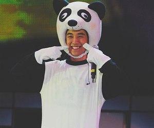 panda, big bang, and k-pop image
