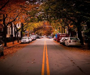 autumn, cars, and road image