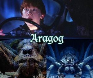 harry potter, hp, and lol image