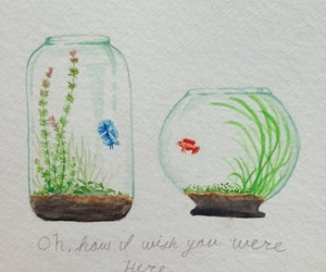 elegant, fish bowl, and wish you were here image