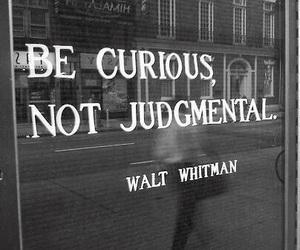 quotes, curious, and walt whitman image