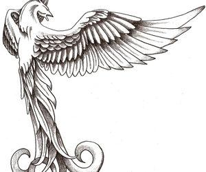 phoenix and tattoo image