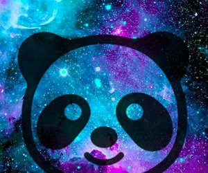 galaxy and panda image
