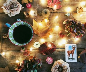 light, coffee, and autumn image