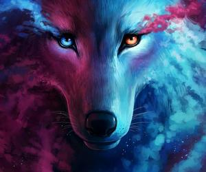wolf, blue, and moon image