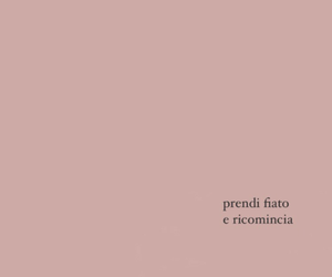 rosa, tumblr, and citazioni image