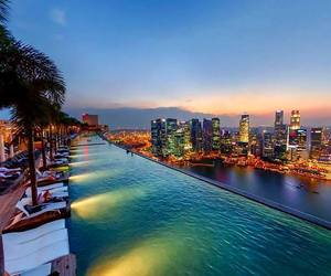 city, lights, and palms image