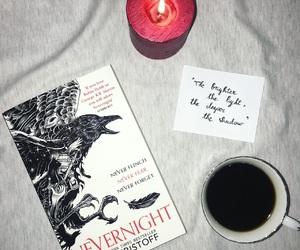 bibliophile, bird, and black image