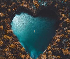 heart, nature, and blue image