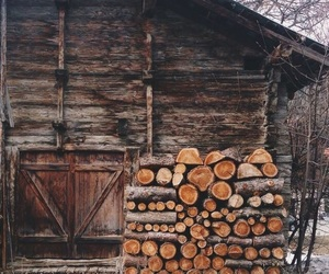 autumn, wood, and photography image