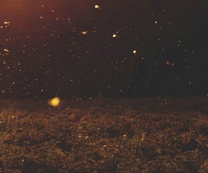 aura, warm, and autumn image
