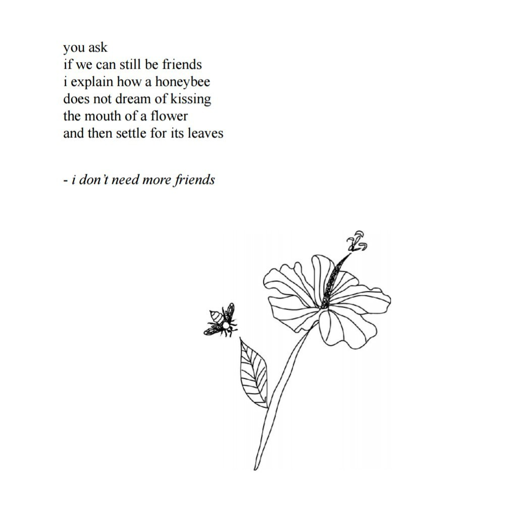 Image result for you ask if we can still be friends i explain how a honeybee does not dream of kissing the mouth of a flower and then settle for its leaves - i don't need more friends