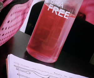 agua, pink, and free image