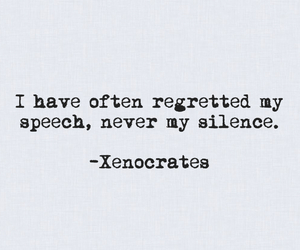 introvert, quotes, and silence image