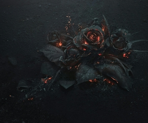 black, fire, and flower image