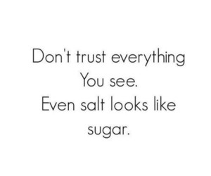 quotes, trust, and salt image