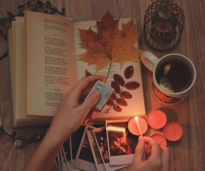autumn, book, and candles image