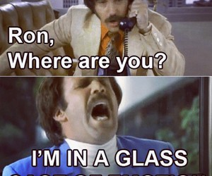 anchorman, will, and will ferrell image