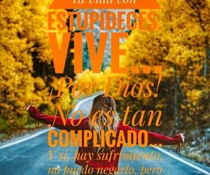 frases, vida, and vive image