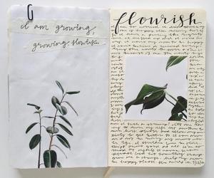 journal and flourish image