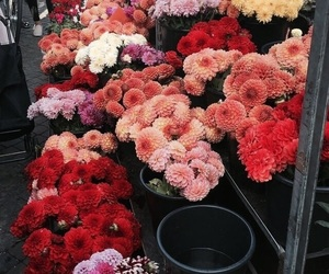 flowers, classy, and luxury image