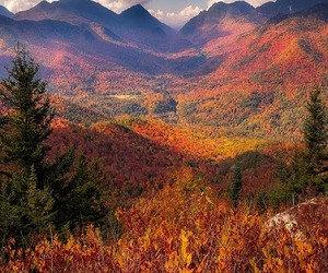 mountains, fall, and nature image