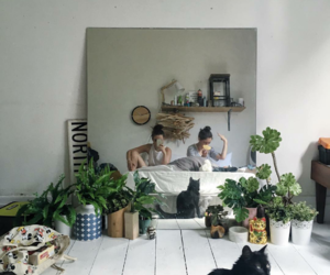 plants, aesthetic, and cat image