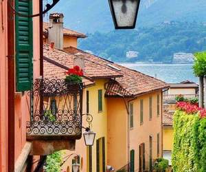 italy, flowers, and travel image