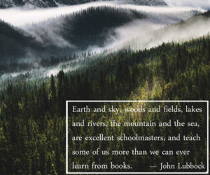 nature, wilderness, and quote image
