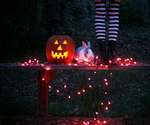 Halloween and bunny image