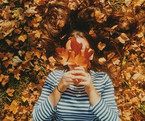 autumn, fall, and inspiration image
