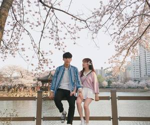 asian, couple, and flowers image