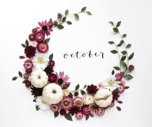 october, autumn, and flowers image