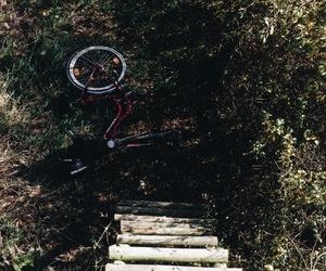 autumn, bike, and ladder image
