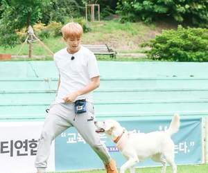 asian, dog, and bts image