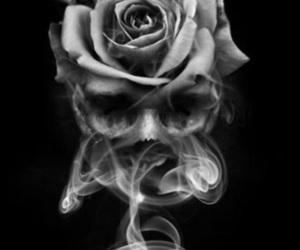 art, rose, and fantasy image
