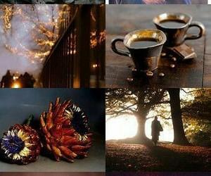 autumn, leaves, and tea image
