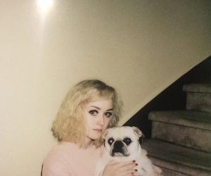 angelic, doll, and pug image