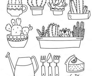 doodle, drawing, and cactus image