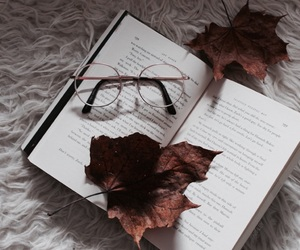 autumn, book, and christmas image