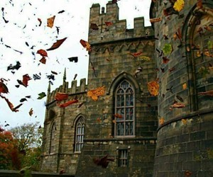 castle, autumn, and leaves image