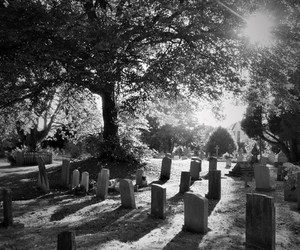 black and white photo, cemetery, and graves image