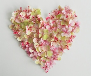 flower and heart image