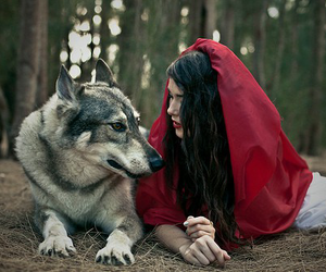 wolf, red, and red riding hood image