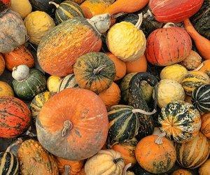 autumn, food, and Halloween image