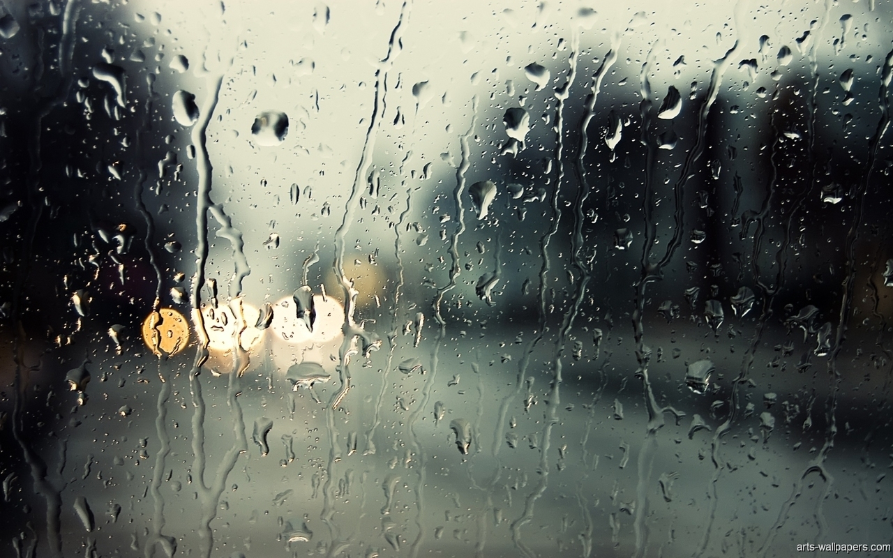 rain, window, and light image