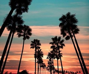 sunset, summer, and travel image
