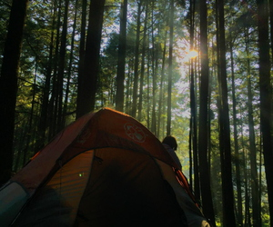 camping, photography, and scouting image