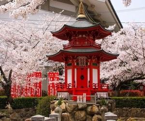 japan, asia, and osaka image