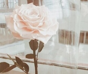 aesthetic, flower, and pastel image